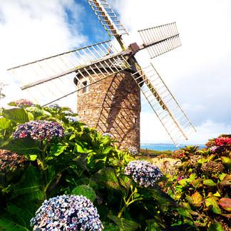Le Moulin de Craca  Retrouvez cette photo dans le SHOP :