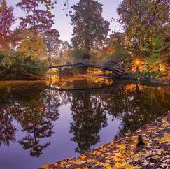 Jardin d'automne  Retrouvez cette photo dans le SHOP :