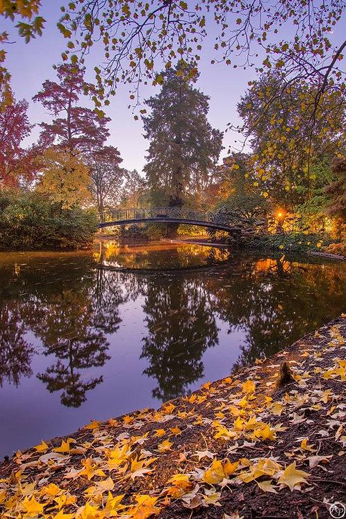 Jardin d'automne, Bordeaux