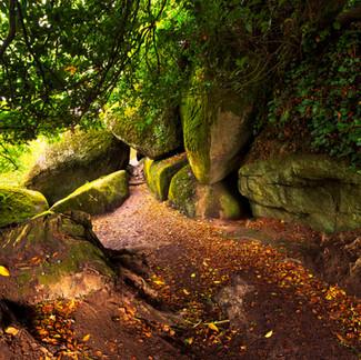 L'entrée de la forêt d'Huelgoat