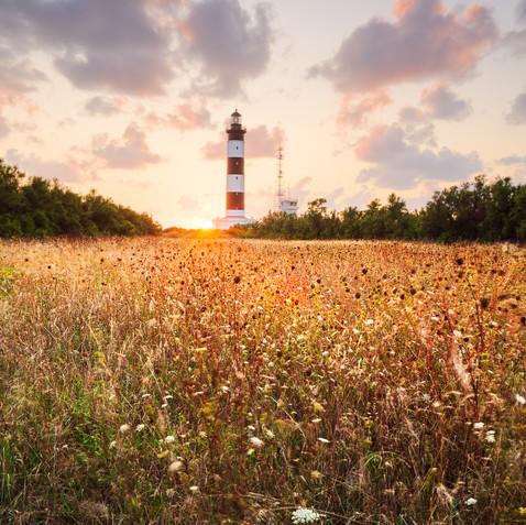 Sunset sur le phare de Chassiron  Retouvez cette photo sur le SHOP :