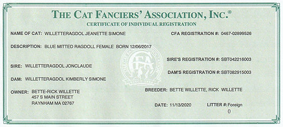 Jeanette CFA Pedigree.jpeg