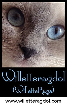 Willetteragdol logo (NEW).jpg