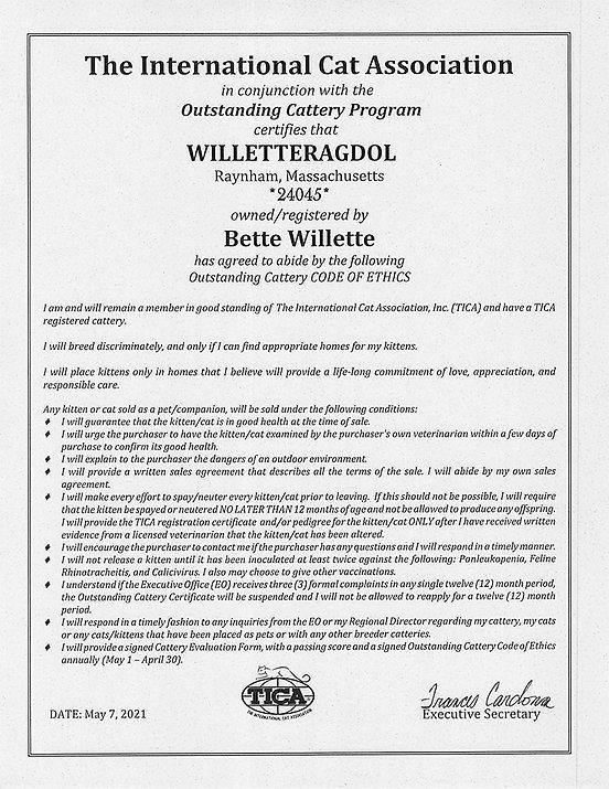 Outstanding Code of Ethics Certificate-1