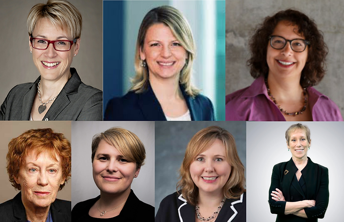 Image of leadership of the Canadian Human Rights Commission