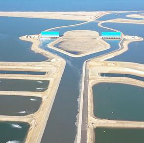 fish-farms-2jpg