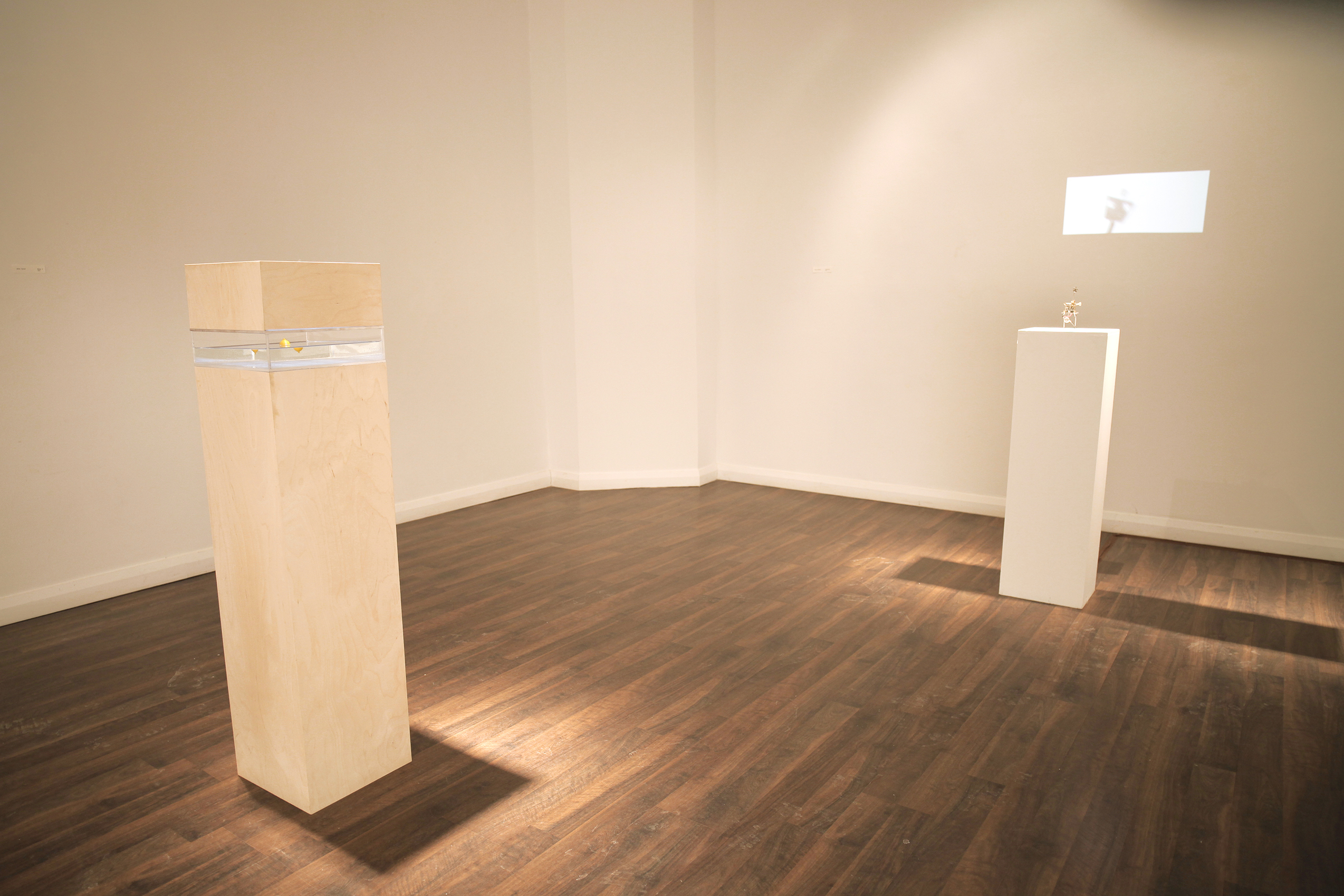 Installation View, Gallery 115, 2015