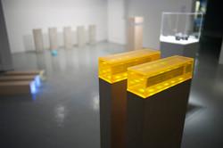 Installation View, XXV, 2015