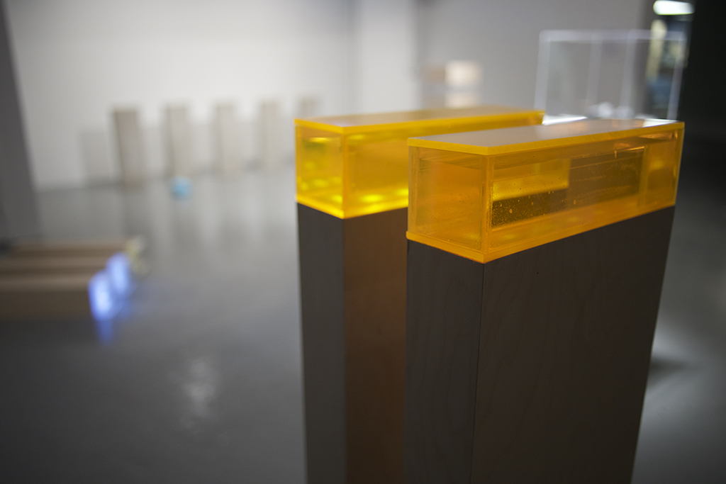 Installation View, XXV, 2015