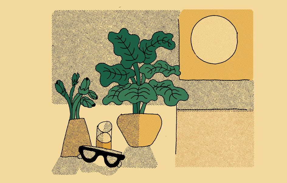 Bo Matteini The Stem Illustration 4.jpg