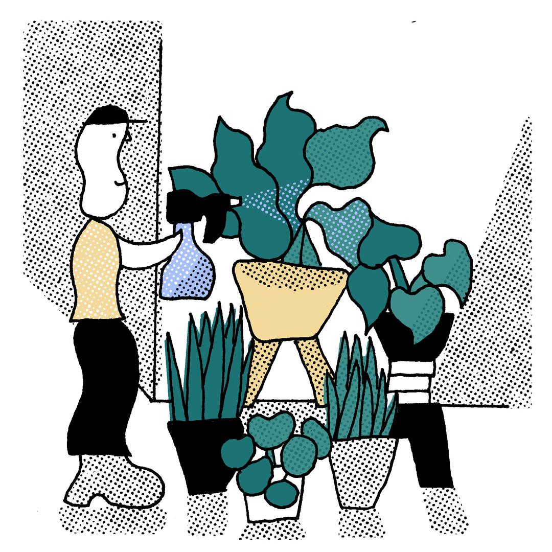 Bo Matteini The Stem Illustration Artboard 3.jpg