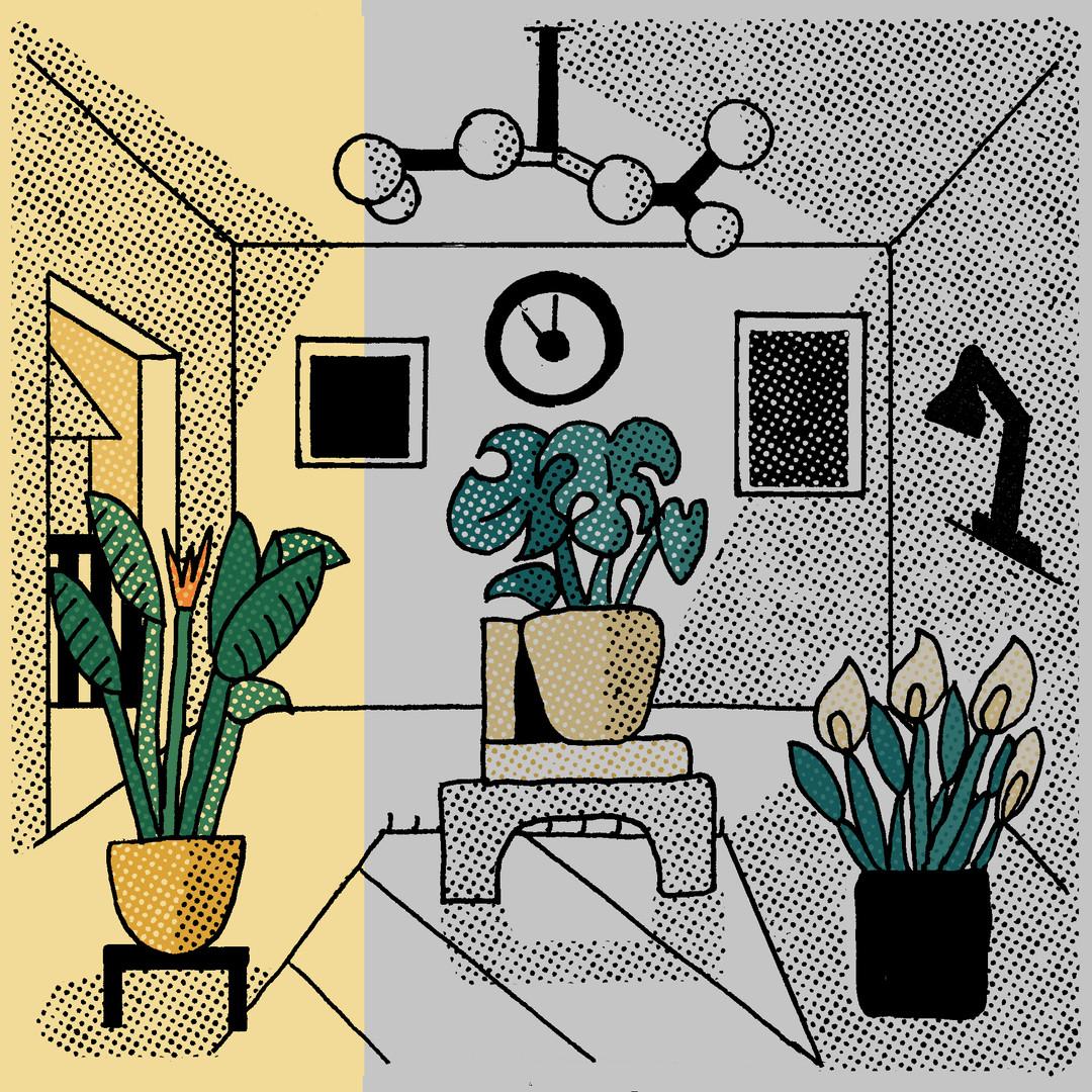 Bo Matteini The Stem Illustration Artboards 5.jpg