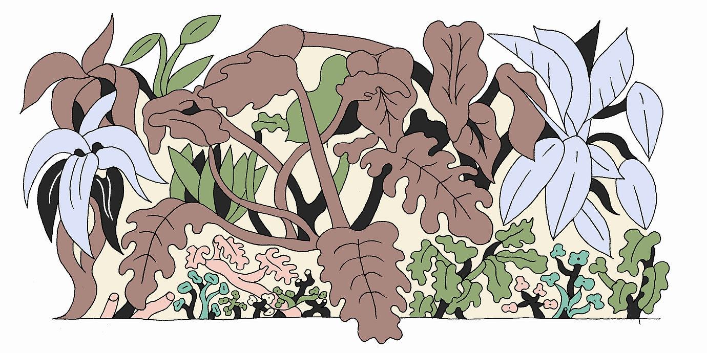 plant scene.jpg