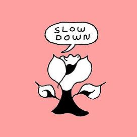 slowdownpapercolArtboard 3.jpg