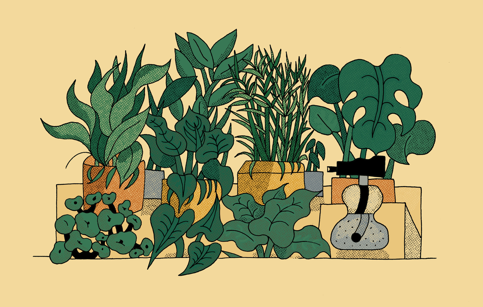 Bo Matteini The Stem Illustration 2.jpg