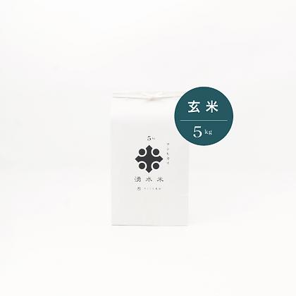湧水米 玄米 5㎏