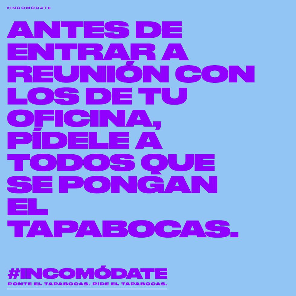 POST_INCOMODATE_4.jpg