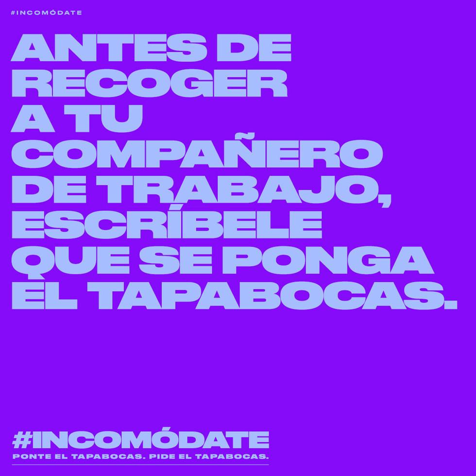 POST_INCOMODATE_5.jpg