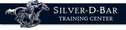 SilverDBarLogo.png