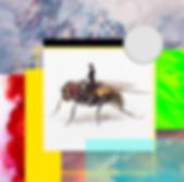 Capture d'écran 2020-03-27 à 13.23.42.pn