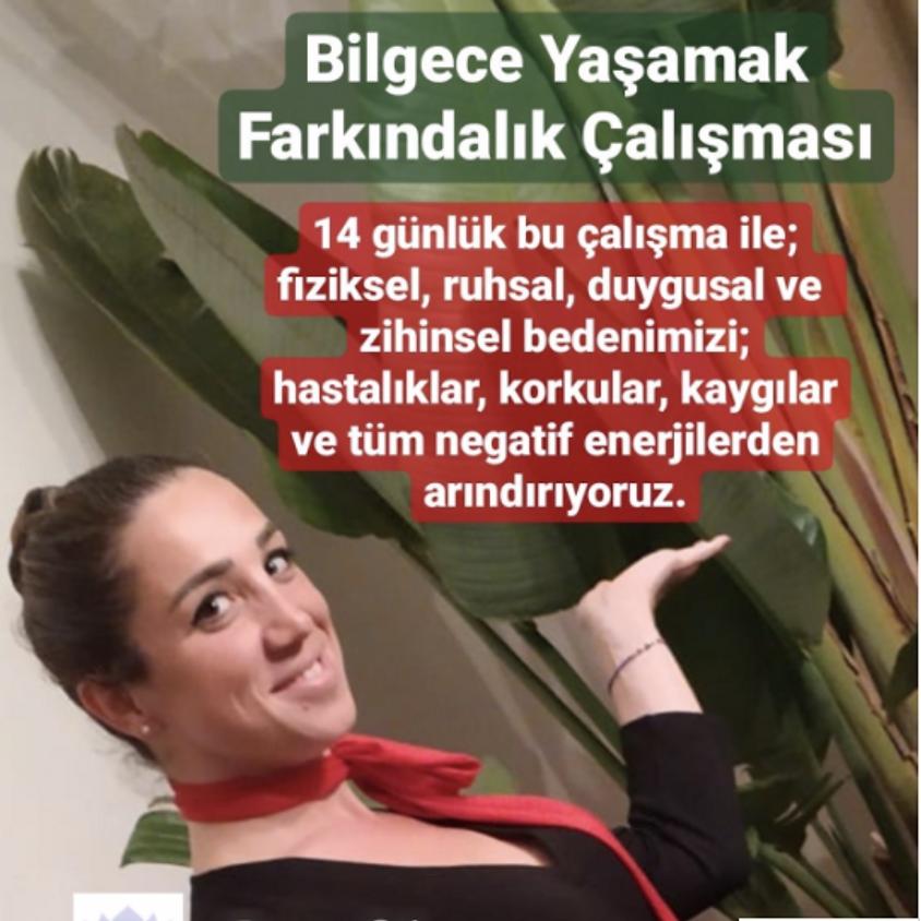 JCI Beşiktaş |  İçimizdeki Hekim