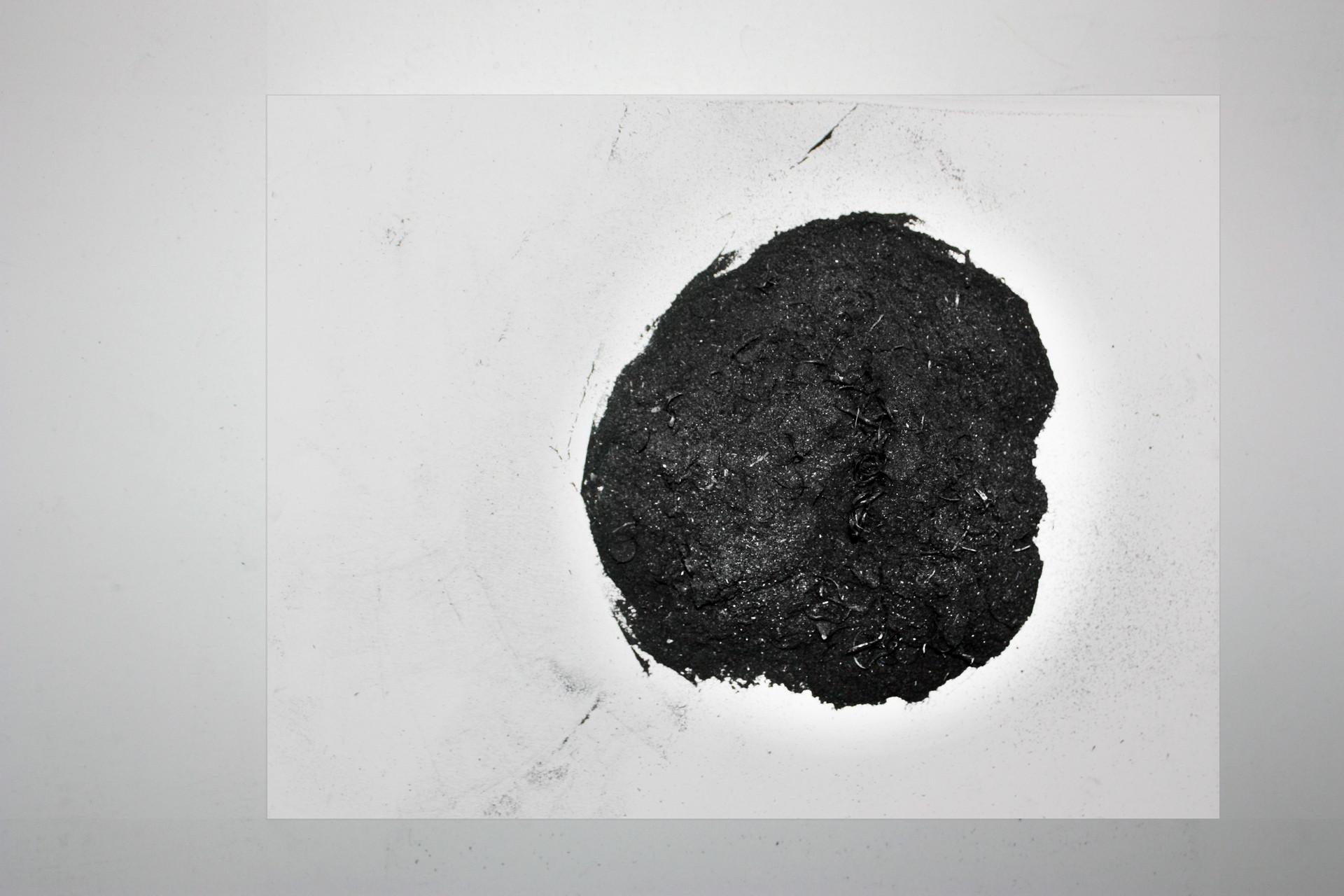 Ari Benjamin Meyers / Gallery Esther Schipper