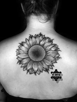 Chrissie Sunflower2