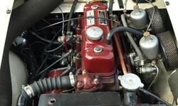P6129003 (2).JPG