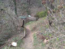forêt lapins cobayes exposition nature au pays basque à itxassou s'ouvre au tourisme