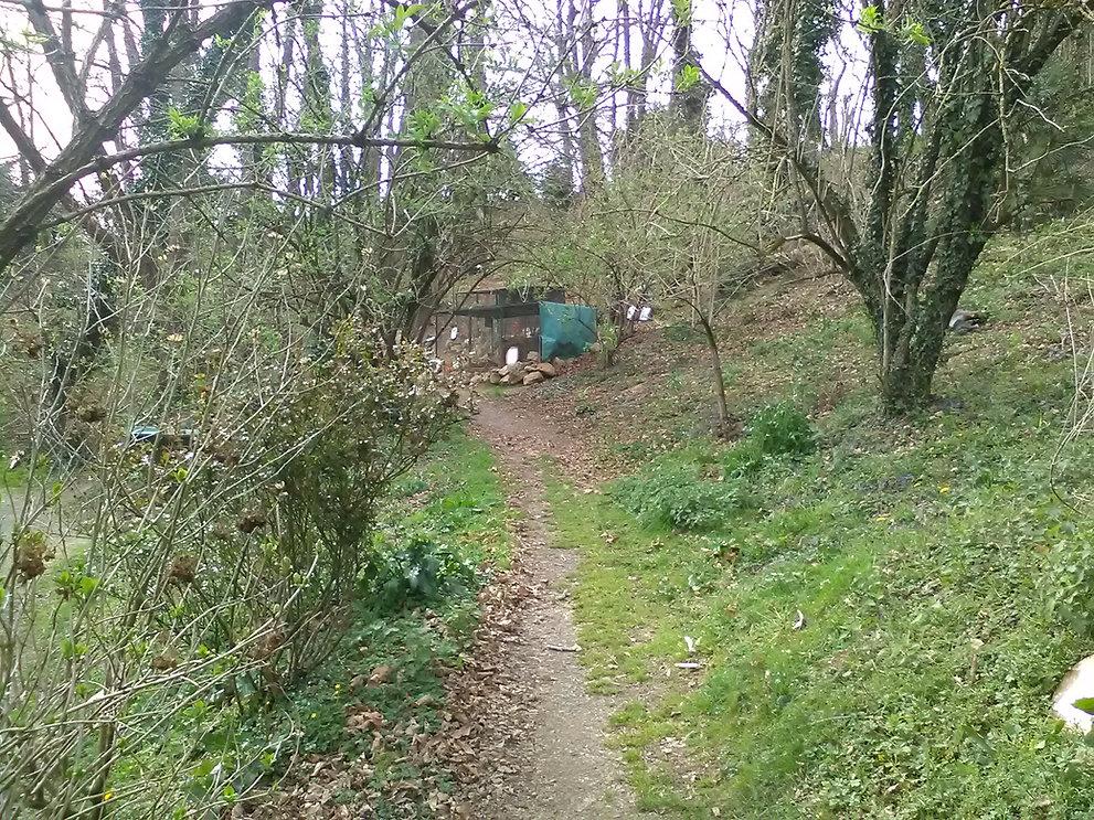 La foret des lapins et cochons d'inde sillonne sur un kilometre à itxassou au pays basque