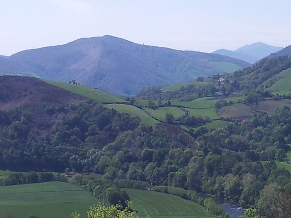 l'elevage de la foret des lapins et cochons d'Inde ouvre ses portes au tourisme à itxassou au pays basque