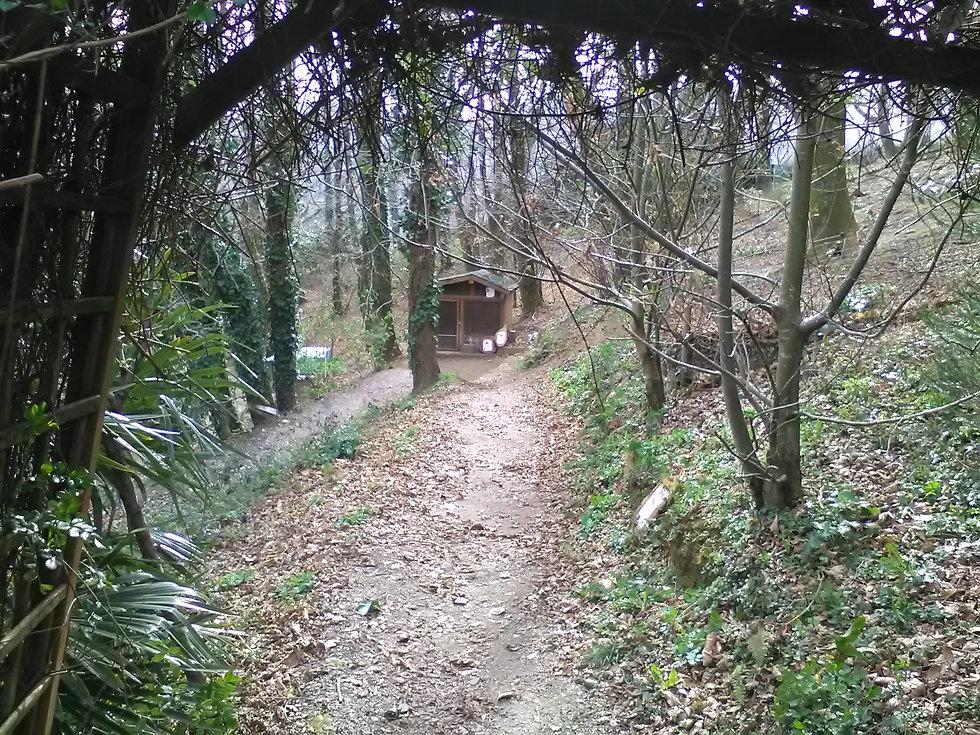 la foret des lapins circuit d'un kilometre pour découvrir lapins et cobayes ou cochons d'Inde s'ouvre au tourisme à itxassou au pays basque