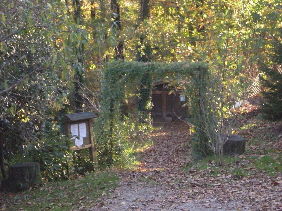 La forêt des lapins découverte de l'élevage de lapins et de cochons d'Inde à itxassou au pays basque
