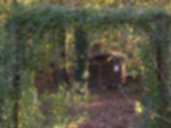 La forêt des lapins exposition des animaux sur le circuit et représentation de l'évolution des animaux à travers le temps elle ouvre ses portes au tourisme à itxassou au pays basque