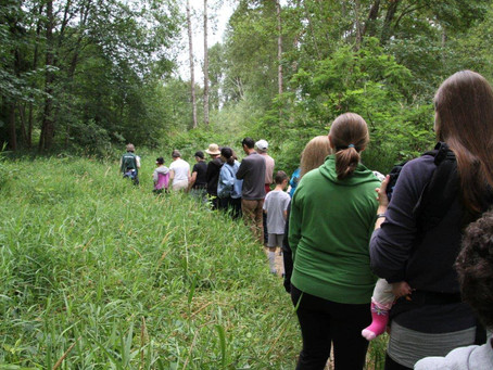Nature walk set for May 21 Wallace Swamp Creek Park
