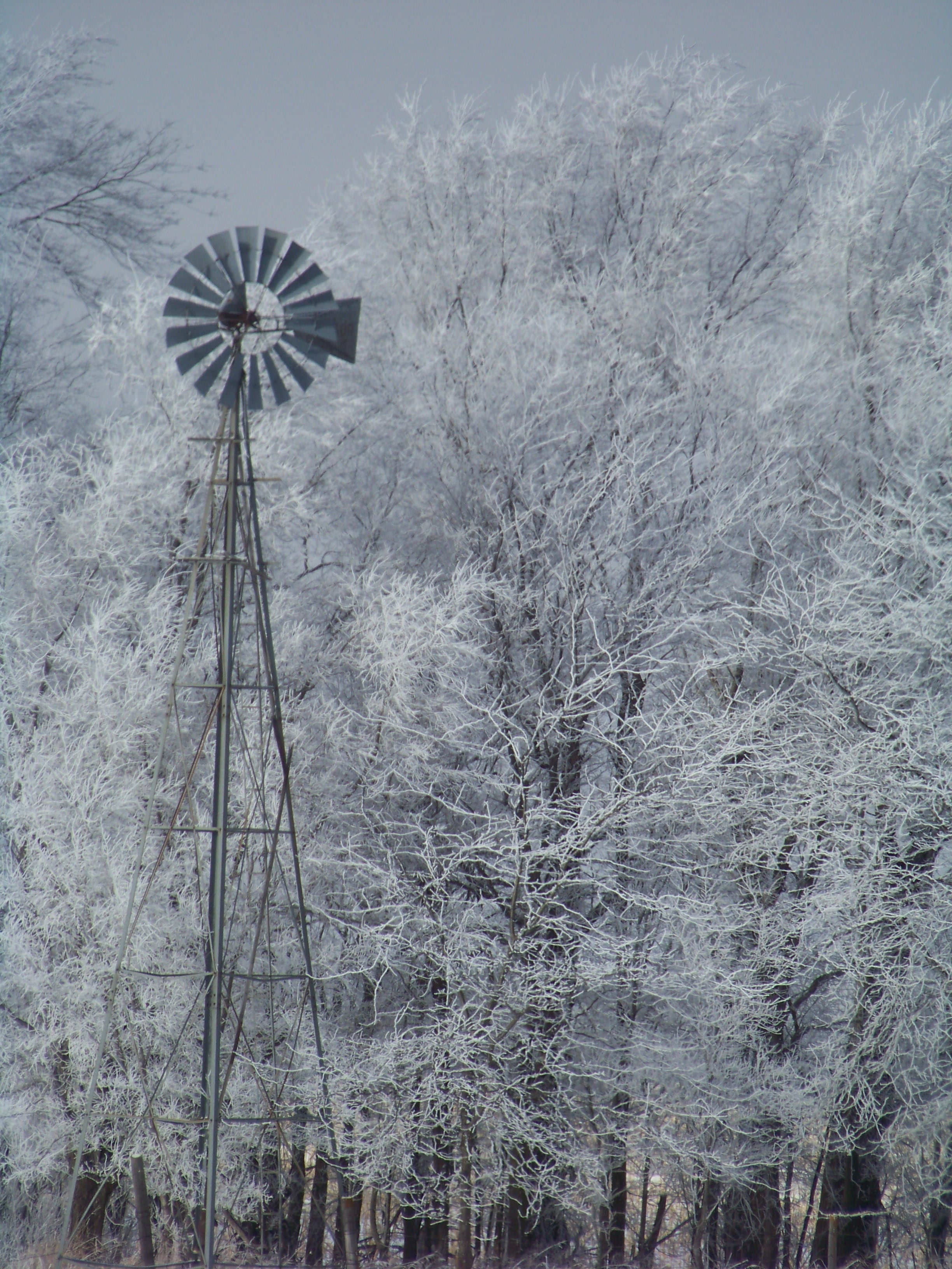Nebraska windmill
