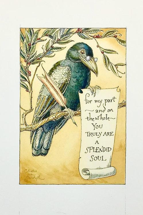 Splendid Raven
