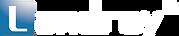 蓝凌hk logo 2020 White v2.png