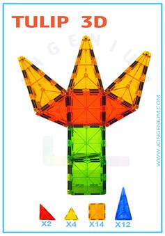 TULIP 3D.jpg