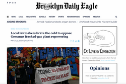 Local Lawmakers Brave the Cold to Oppose Gowanus Fracked Gas Plant
