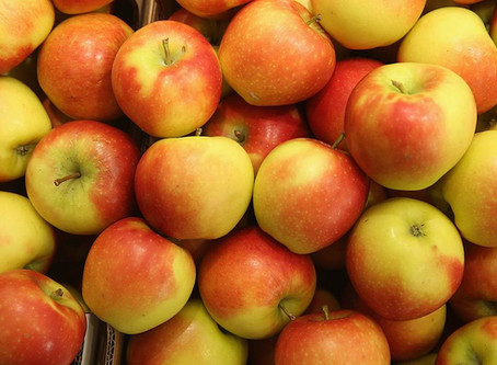 ANNUAL APPLE HARVEST SALE IS HERE !!!