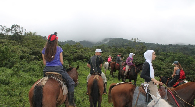 SOC Horseback Ride in Cloud Forest