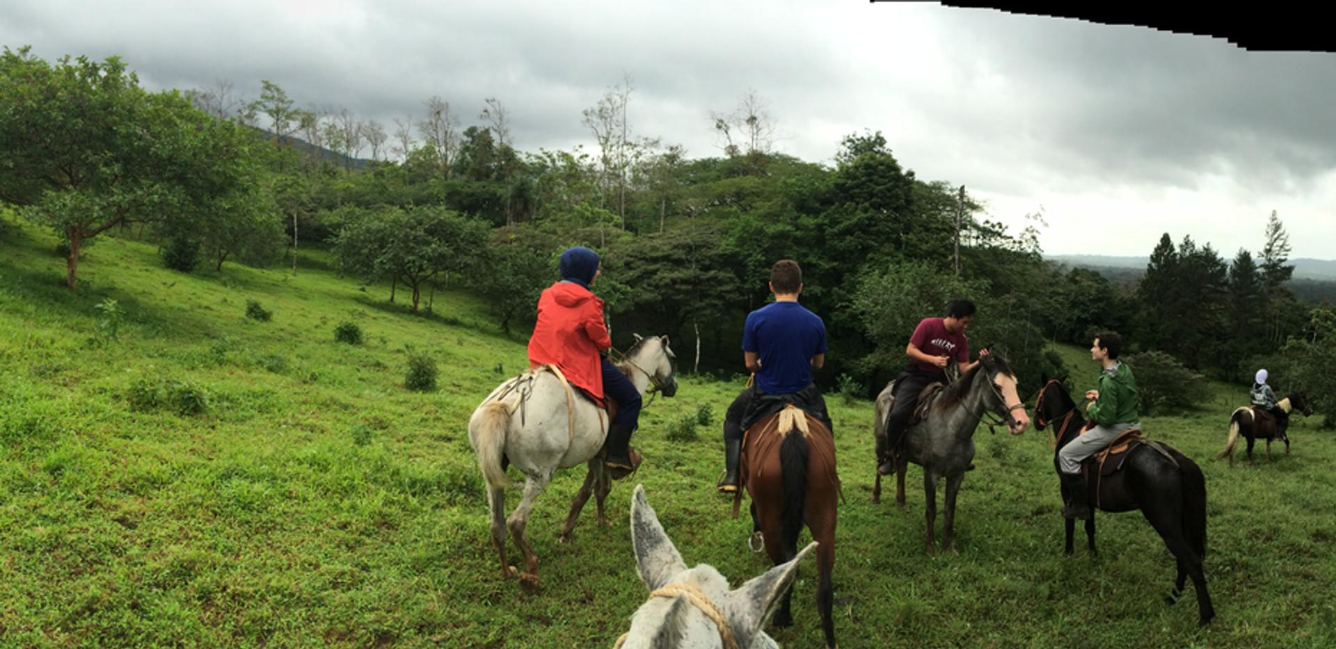 SOC Horseback Ride - Up the volcano