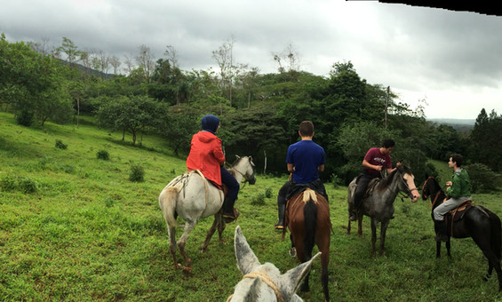 SOC Horseback Ride - Up the volcano