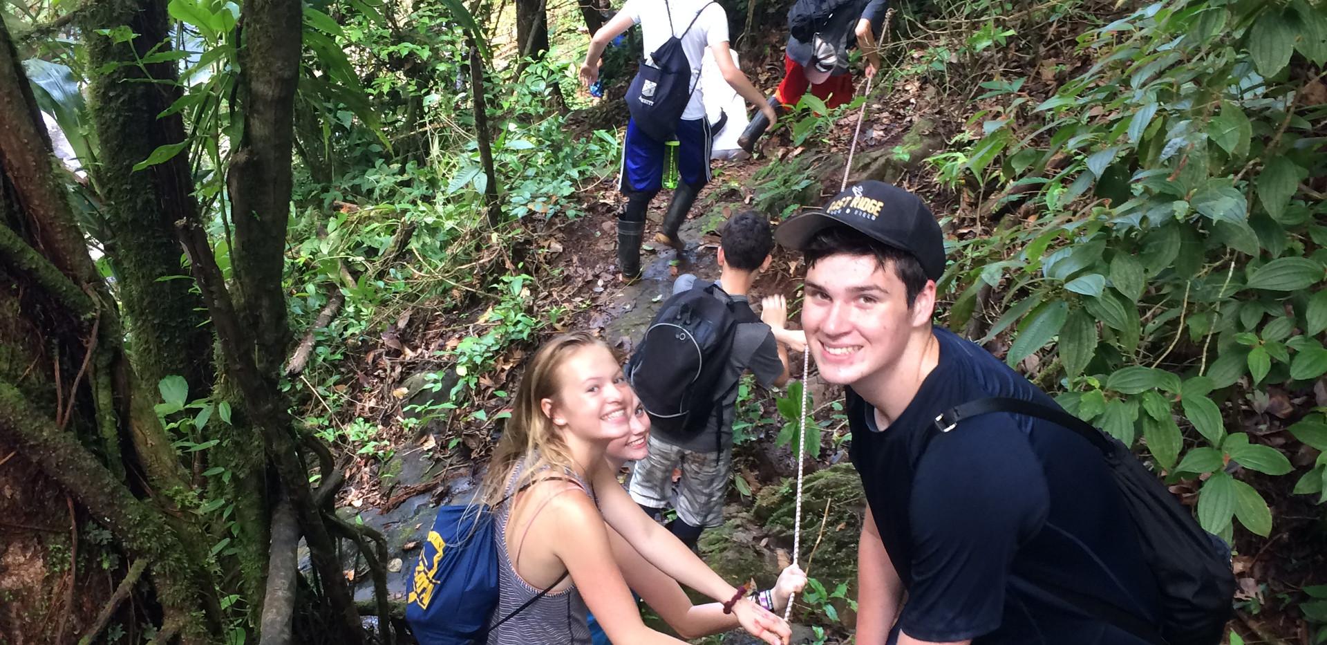 SOC rainforest hike