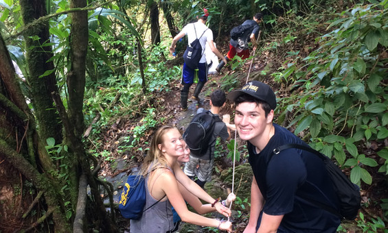 SOC rainforest hike
