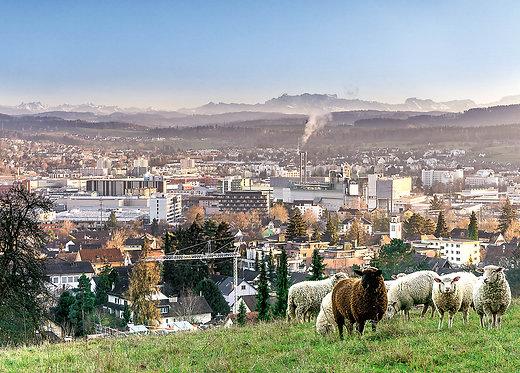 Blick vom Lindberg auf Oberwinterthur Postkarte A6