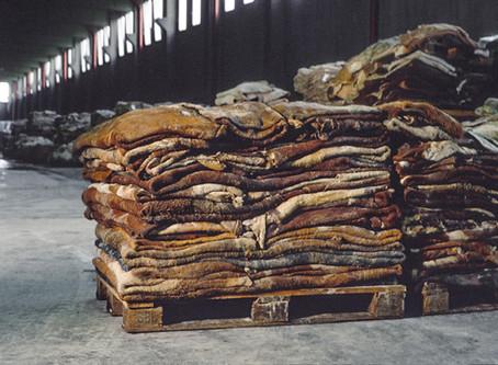 Auswirkungen der Lederproduktion und die Alternative Kork