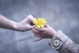 Parent%20and%20child%20hands%20handing%20yellow%20flowers_edited.jpg