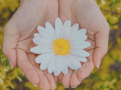 """정민혁 """"Daisy"""" Release"""